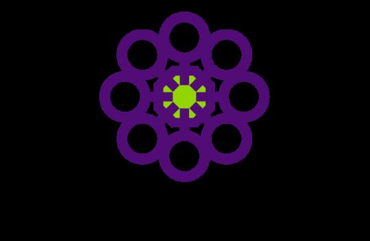 Women's Safety Services SA logo
